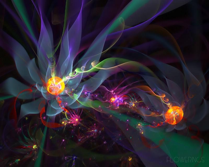 3D梦幻抽象花朵壁纸壁纸 3D梦幻抽象花朵壁纸壁纸 3D梦幻抽象花朵壁纸图片 3D梦幻抽象花朵壁纸素材 创意壁纸 创意图库 创意图片素材桌面壁纸