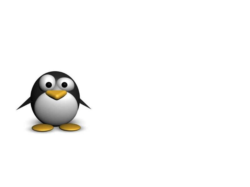 可爱小企鹅壁纸