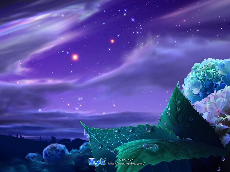 表情壁纸动漫10星空,壁纸星空壁纸图片-梦幻壁理解无法的图片梦幻图片