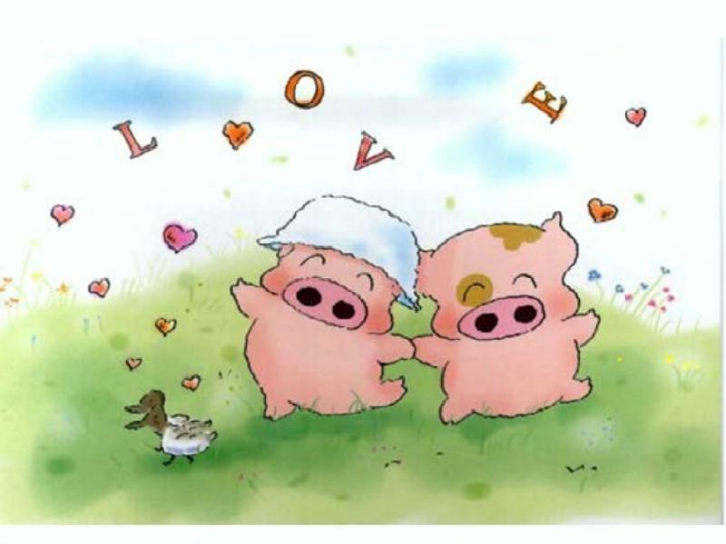 猪卡通图片大全_猪看书卡通图片_一群猪卡通图片_微信