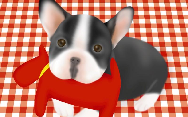 手绘趣味小狗狗图片 ,手绘小狗图片, 小狗绘画壁纸,漫画狗狗图片,宠物