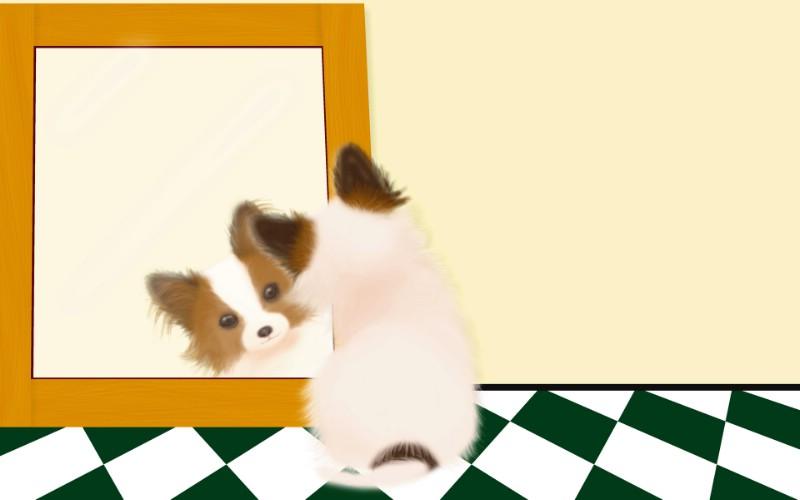 狗狗照镜子Painter门诊漫画医生,Paintera漫画手绘壁纸小狗图片