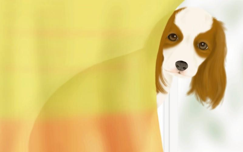手绘小狗图片, 小狗绘画壁纸,漫画狗狗图片,宠物狗狗的插画,可爱狗狗