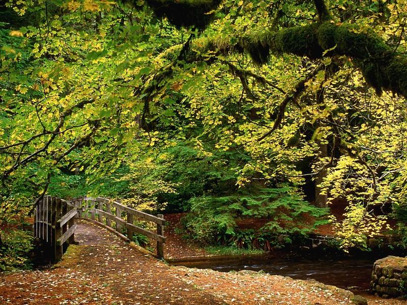 1600x1200自然风景壁纸壁纸 1600x1200自然风景壁纸壁纸 1600x1200自然风景壁纸图片 1600x1200自然风景壁纸素材 风景壁纸 风景图库 风景图片素材桌面壁纸