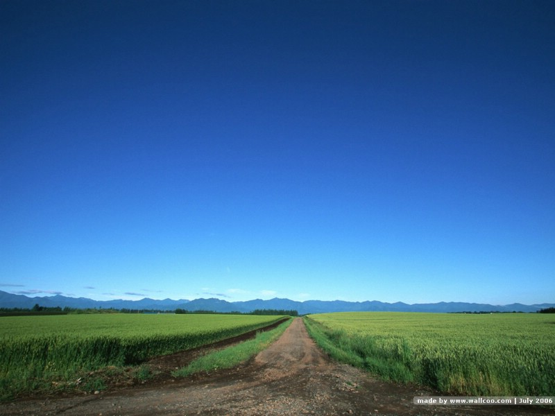allpaper of road photography壁纸 道路美景三
