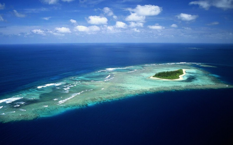 nature_2009_landscape_1680_desktop_04_30553_m - The wonderful world of coral reefs  - Science and Research