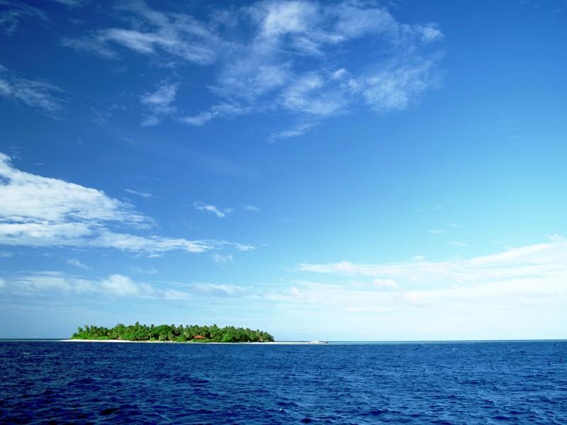 海滩天空椰树1壁纸 海滩天空椰树1图片 海滩天空椰树1素材 风景壁纸