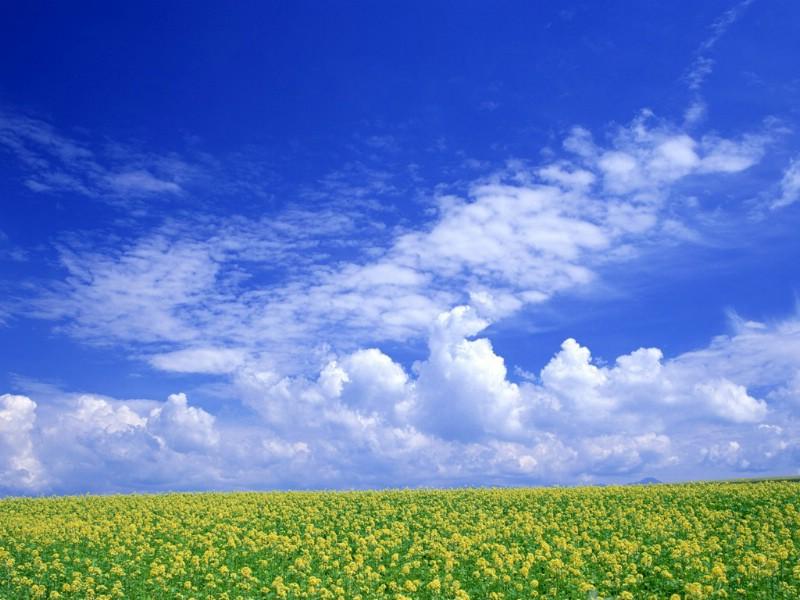 极品蓝天白云原野绝美桌面 极品蓝天白云原野绝美桌面壁纸,极品!蓝天白云原