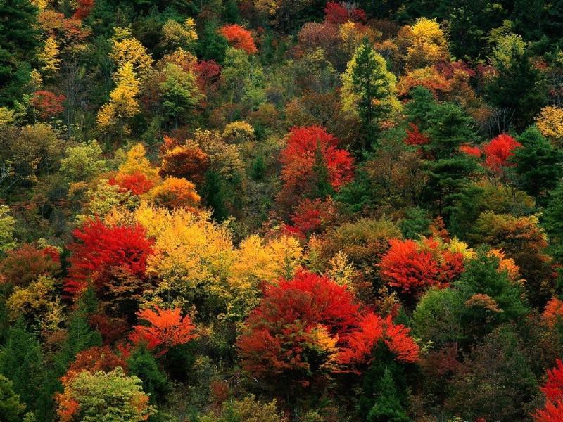 世界绝美风景 - 有声有色 - 有声有色的博客