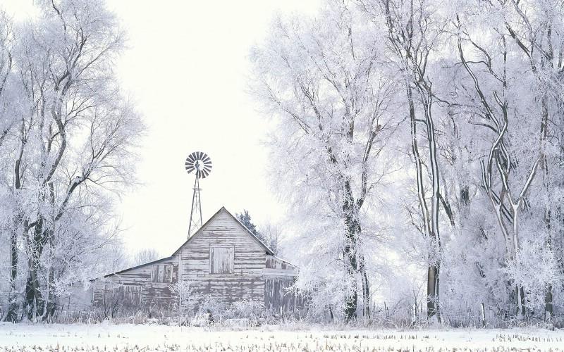 雪景桌面,下雪的图片