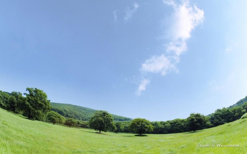 青青草原草原天空摄影壁纸图片 青青草原草原天空摄影壁纸素材 风景