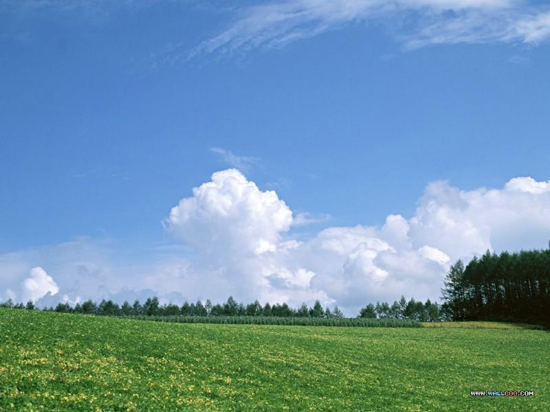 天空大地 蓝天白云 蓝天白云绿草地图片 desk