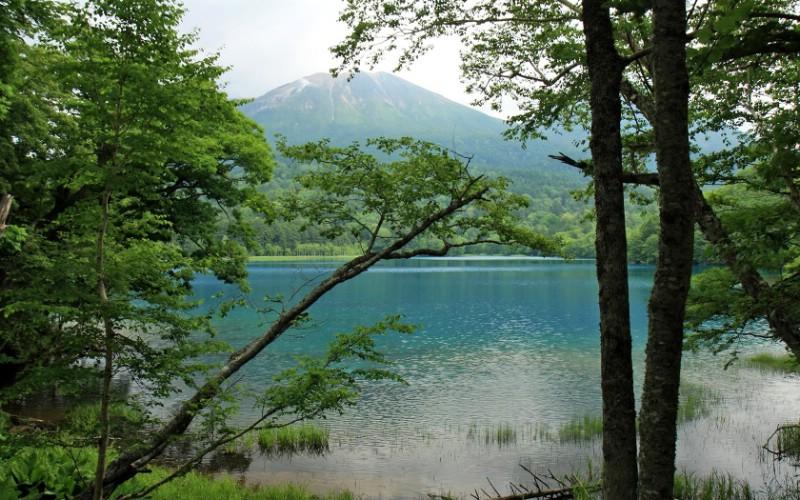 夏日北海道 北海道郊外风景 日本北海道郊外风