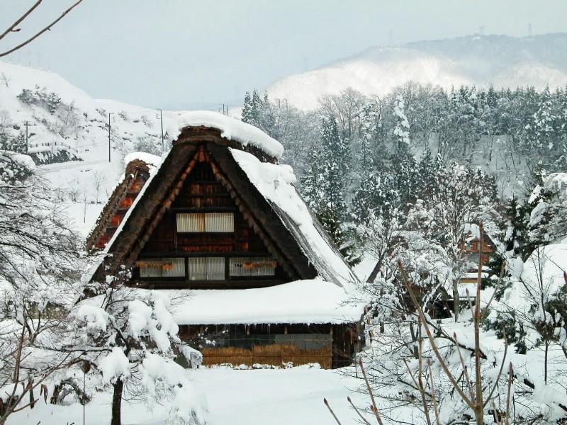 美轮美奂 冰雪世界(1) - 红柳 - 红柳的博客