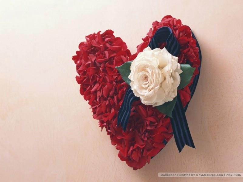 心形图片 心形鲜花壁纸 插花艺术祝福的花饰壁纸 插花艺术祝福的花饰图片 插花艺术祝福的花饰素材 花卉壁纸 花卉图库 花卉图片素材桌面壁纸