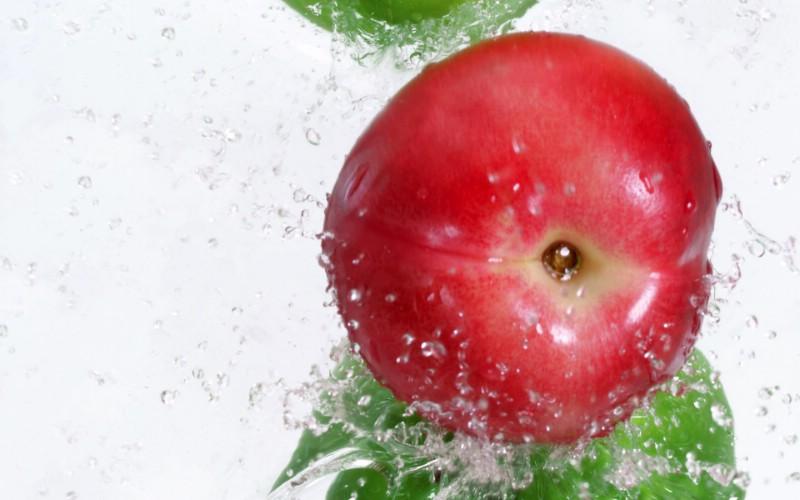 动感水果 2 12壁纸 动感水果壁纸 动感水果图片 动感水果素材 花卉壁纸 花卉图库 花卉图片素材桌面壁纸