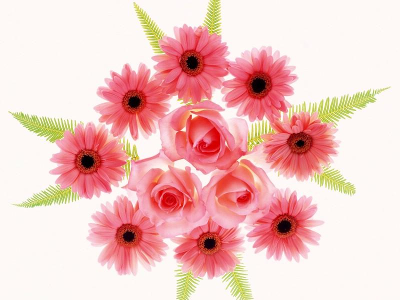 1600花朵背景 1 9壁纸 花朵背景 1600花朵背景 第一辑壁纸 花朵背景 1600花朵背景 第一辑图片 花朵背景 1600花朵背景 第一辑素材 花卉壁纸 花卉图库 花卉图片素材桌面壁纸