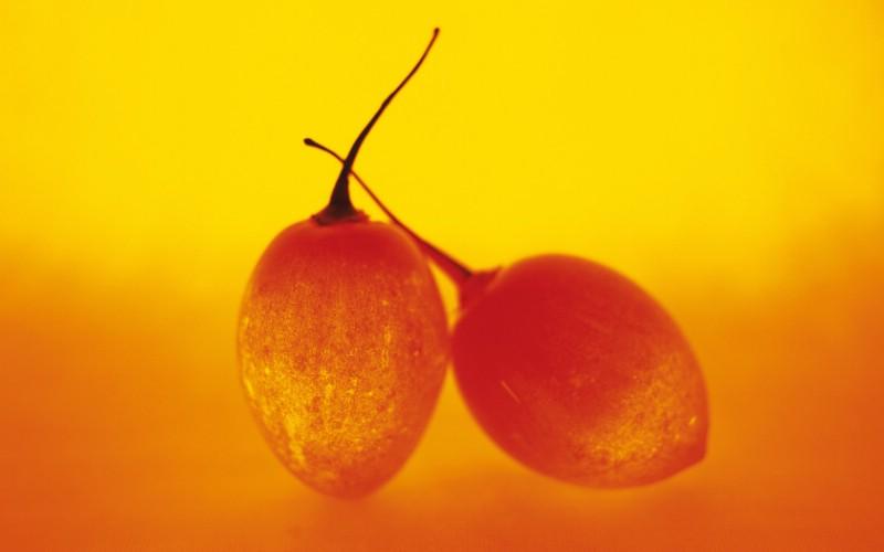 水果特写 2 12壁纸 水果特写壁纸 水果特写图片 水果特写素材 花卉壁纸 花卉图库 花卉图片素材桌面壁纸