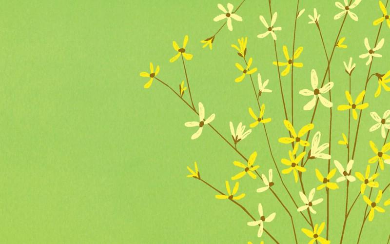 花卉图形壁纸 花卉图案设计壁纸壁纸 艺术与抽象花卉壁纸壁纸 艺术与抽象花卉壁纸图片 艺术与抽象花卉壁纸素材 花卉壁纸 花卉图库 花卉图片素材桌面壁纸