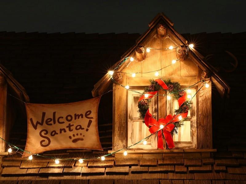 壁纸 迪斯尼/圣诞节夜景壁纸 2007东京迪士尼乐园的圣诞夜...