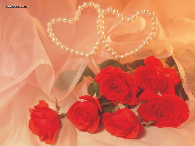 Red Roses On Valentine S Day