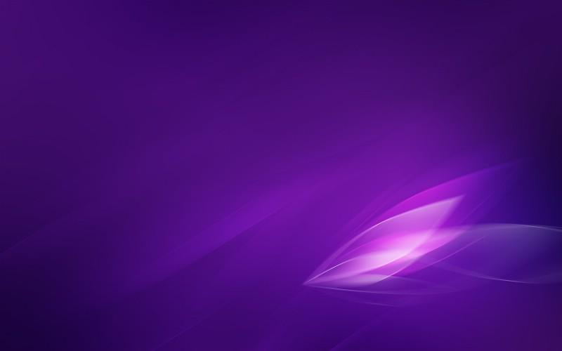 蚕丝紫色壁纸 效果图