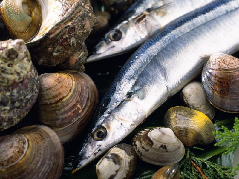 海鲜美食 5 5壁纸 海鲜美食壁纸 海鲜美食图片 海鲜美食素材 美食壁纸 美食图库 美食图片素材桌面壁纸