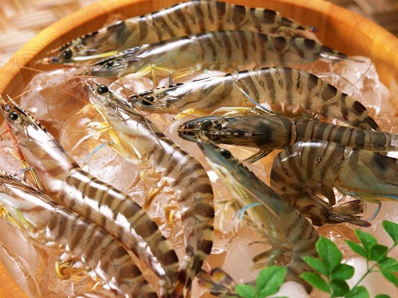 海鲜美食 2 2壁纸 海鲜美食壁纸 海鲜美食图片 海鲜美食素材 美食壁纸 美食图库 美食图片素材桌面壁纸