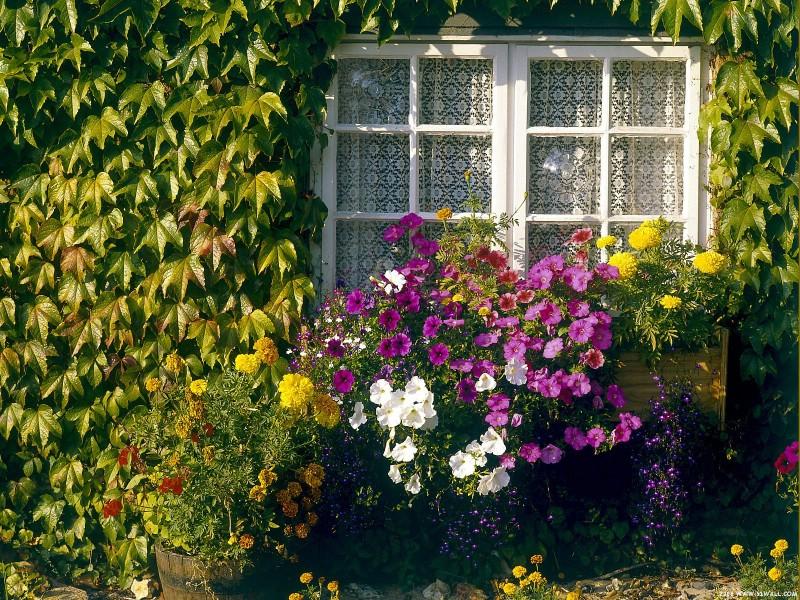 庭院艺术壁纸 庭院艺术壁纸 庭院艺术图片 庭院艺术素材 人文壁纸 人文图库 人文图片素材桌面壁纸