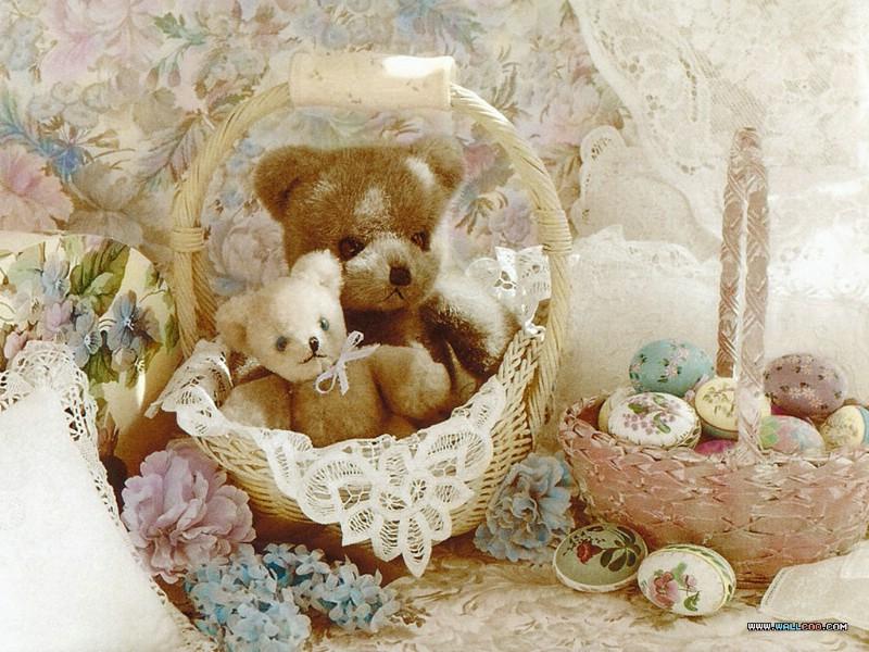 一百岁的小熊 泰迪熊 Teddy bears 二 一百岁泰