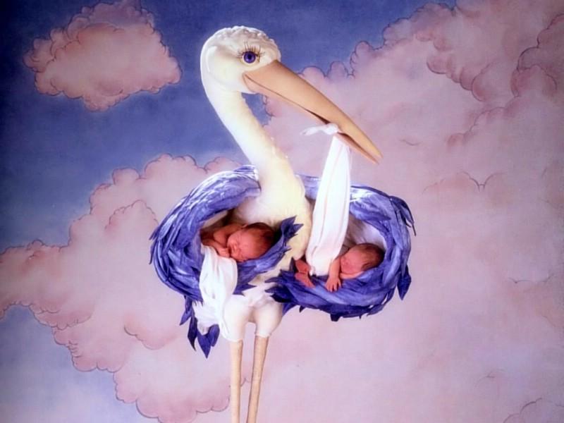 可爱婴儿造型 可爱婴儿图片壁纸