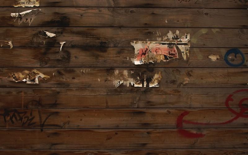 高清宽屏植物风光摄影壁纸 2009 09 26 壁纸62壁纸 高清宽屏植物风光摄影壁纸 高清宽屏植物风光摄影图片 高清宽屏植物风光摄影素材 系统壁纸 系统图库 系统图片素材桌面壁纸