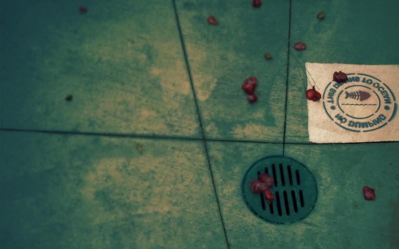 精品经典 实物摄影电脑PS宽屏壁纸 四 壁纸61壁纸 精品经典:实物摄影电壁纸 精品经典:实物摄影电图片 精品经典:实物摄影电素材 系统壁纸 系统图库 系统图片素材桌面壁纸