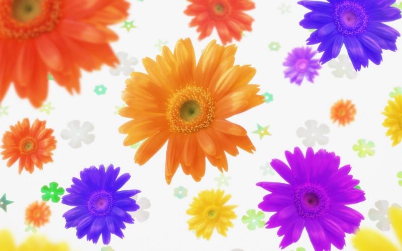 朦胧花朵柔美 宽屏壁纸 壁纸2壁纸 朦胧花朵柔美 宽屏壁壁纸 朦胧花朵柔美 宽屏壁图片 朦胧花朵柔美 宽屏壁素材 系统壁纸 系统图库 系统图片素材桌面壁纸