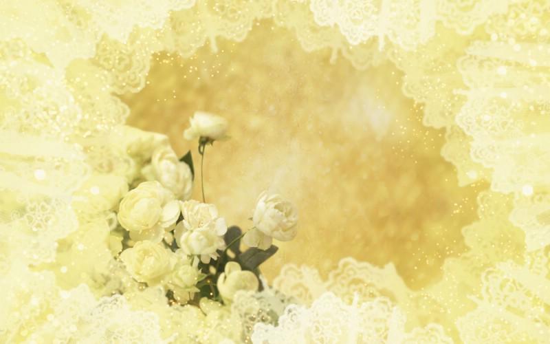 朦胧花朵柔美 宽屏壁纸 壁纸5壁纸 朦胧花朵柔美 宽屏壁壁纸 朦胧花朵柔美 宽屏壁图片 朦胧花朵柔美 宽屏壁素材 系统壁纸 系统图库 系统图片素材桌面壁纸