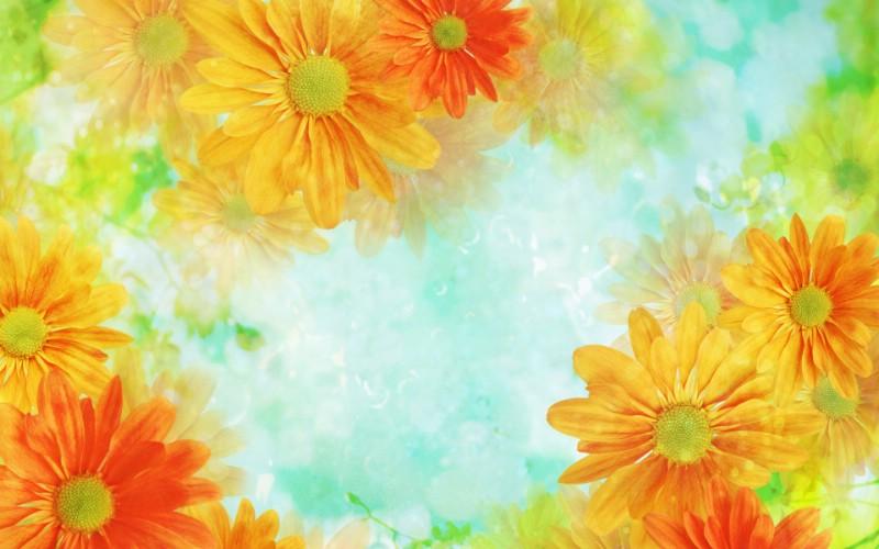 朦胧花朵柔美 宽屏壁纸 壁纸10壁纸 朦胧花朵柔美 宽屏壁壁纸 朦胧花朵柔美 宽屏壁图片 朦胧花朵柔美 宽屏壁素材 系统壁纸 系统图库 系统图片素材桌面壁纸
