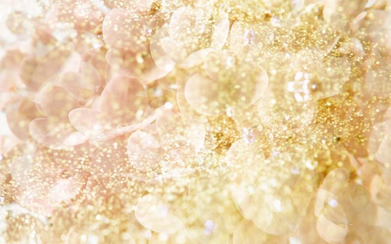 朦胧花朵柔美 宽屏壁纸 壁纸13壁纸 朦胧花朵柔美 宽屏壁壁纸 朦胧花朵柔美 宽屏壁图片 朦胧花朵柔美 宽屏壁素材 系统壁纸 系统图库 系统图片素材桌面壁纸