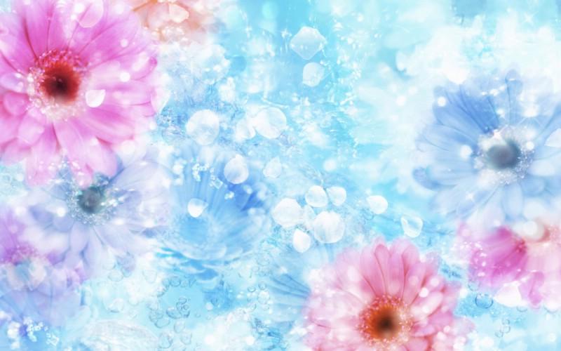 朦胧花朵柔美 宽屏壁纸 壁纸21壁纸 朦胧花朵柔美 宽屏壁壁纸 朦胧花朵柔美 宽屏壁图片 朦胧花朵柔美 宽屏壁素材 系统壁纸 系统图库 系统图片素材桌面壁纸