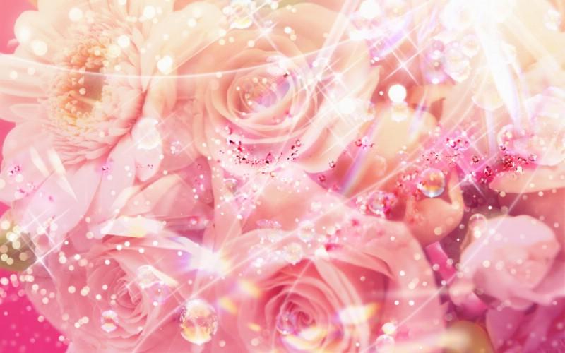 朦胧花朵柔美 宽屏壁纸 壁纸25壁纸 朦胧花朵柔美 宽屏壁壁纸 朦胧花朵柔美 宽屏壁图片 朦胧花朵柔美 宽屏壁素材 系统壁纸 系统图库 系统图片素材桌面壁纸