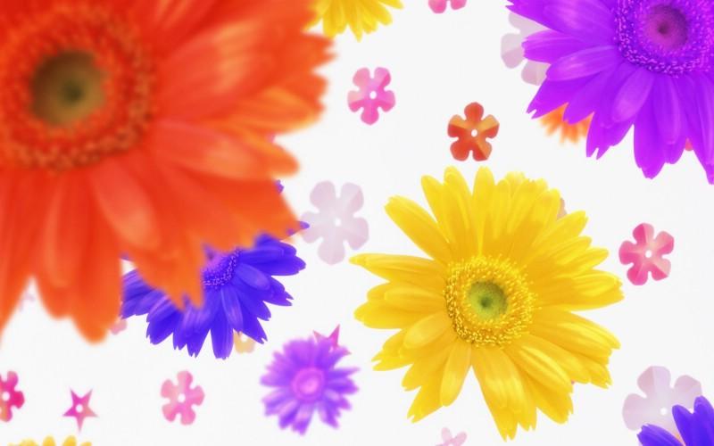朦胧花朵柔美 宽屏壁纸 壁纸49壁纸 朦胧花朵柔美 宽屏壁壁纸 朦胧花朵柔美 宽屏壁图片 朦胧花朵柔美 宽屏壁素材 系统壁纸 系统图库 系统图片素材桌面壁纸
