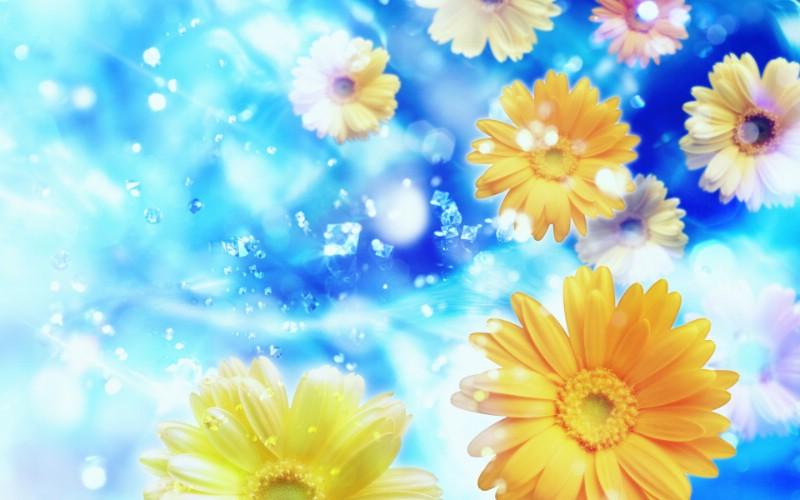 朦胧花朵柔美 宽屏壁纸 壁纸26壁纸 朦胧花朵柔美 宽屏壁壁纸 朦胧花朵柔美 宽屏壁图片 朦胧花朵柔美 宽屏壁素材 系统壁纸 系统图库 系统图片素材桌面壁纸