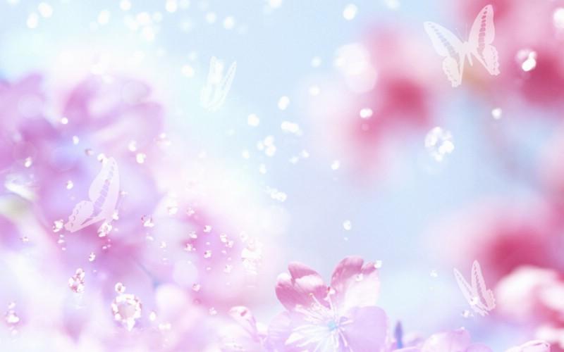 朦胧花朵柔美 宽屏壁纸 壁纸96壁纸 朦胧花朵柔美 宽屏壁壁纸 朦胧花朵柔美 宽屏壁图片 朦胧花朵柔美 宽屏壁素材 系统壁纸 系统图库 系统图片素材桌面壁纸