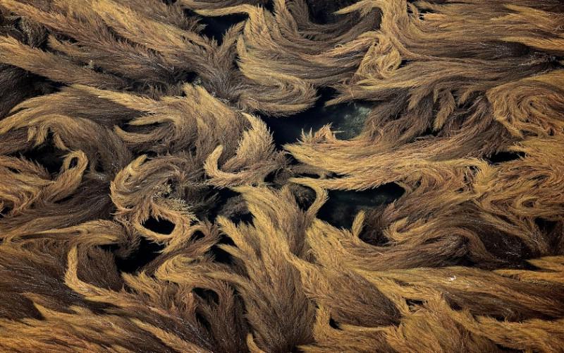 上帝之眼 扬恩 亚瑟 Yann Arthus Bertrand 空中摄影奇景壁纸法国篇 壁纸12壁纸 上帝之眼:扬恩・亚瑟壁纸 上帝之眼:扬恩・亚瑟图片 上帝之眼:扬恩・亚瑟素材 系统壁纸 系统图库 系统图片素材桌面壁纸